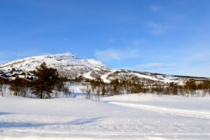 Yvonne Holden-Skihang Sprachreisen nach Norwegen